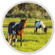 Leaving The Chincoteague Ponies Round Beach Towel