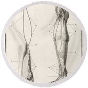 Leg Nerve, 18th Century Illustration Round Beach Towel
