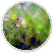 Lemon Butterfly In Summer Meadow  Round Beach Towel