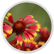 Lemon Yellow And Candy Apple Red Coneflower Round Beach Towel
