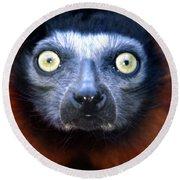 Lemur Glare Round Beach Towel