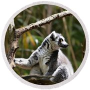 Lemur Love Round Beach Towel