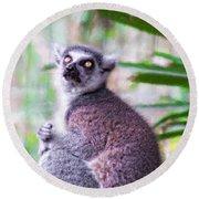 Lemur's Gaze Round Beach Towel