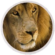 Leo The Lion Round Beach Towel