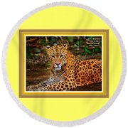Leopard Beauty Catus 1 No. 1 L A With Decorative Ornate Printed Frame Round Beach Towel