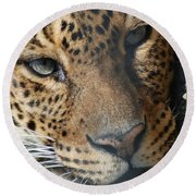 Leopard Face Round Beach Towel