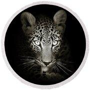 Leopard Portrait In The Dark Round Beach Towel