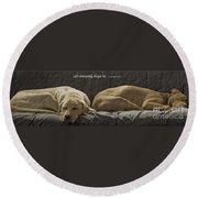 Let Sleeping Dogs Lie Round Beach Towel
