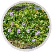 Lettuce Lake Flowers Round Beach Towel