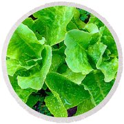 Lettuces Round Beach Towel