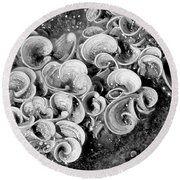 Life On The Rocks In Black And White Round Beach Towel