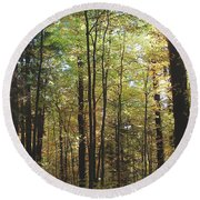 Light Among The Trees Vertical Round Beach Towel
