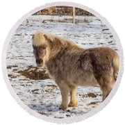 Light Brown Pony Round Beach Towel