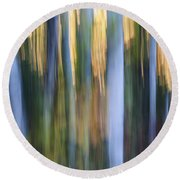 Light In Evening Forest Round Beach Towel