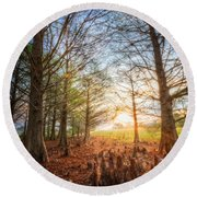 Light In The Cypress Trees II Round Beach Towel