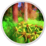 Light In  The Forest Round Beach Towel