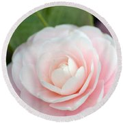 Light Pink Camellia Flower Round Beach Towel
