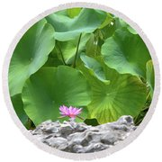 Light Purple Water Lily And Large Green Leaves Round Beach Towel