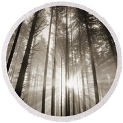 Light Through Forest Round Beach Towel