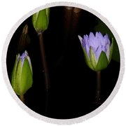 Light Violet Lilies Round Beach Towel