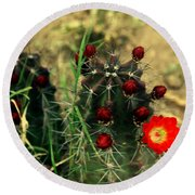 Like A Little Red Star Round Beach Towel