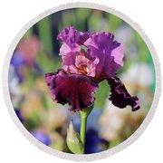 Lilac Iris In Bloom Round Beach Towel