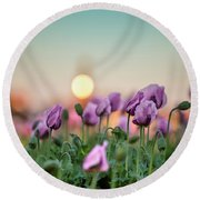 Lilac Poppy Flowers Round Beach Towel