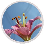 Lilies Art Prints Pink Lily Flower Giclee Art Prints Baslee Troutman Round Beach Towel