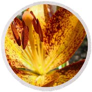 Lilies Glowing Orange Lily Flower Floral Art Print Canvas Baslee Troutman Round Beach Towel