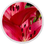Lilies Of The Oaks Round Beach Towel