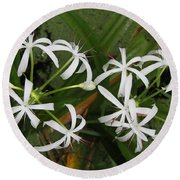 Lilies Of The Swamp Round Beach Towel