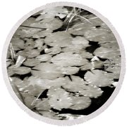 Lillies 8653 Round Beach Towel