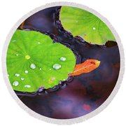 Lillies On Water Round Beach Towel