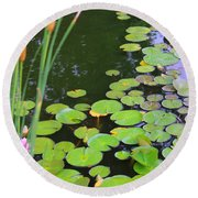 Lillypads And Cattails Round Beach Towel