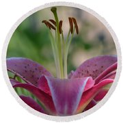 Lily 4 Round Beach Towel
