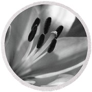 Lily - American Cheerleader 03 - Bw - Water Paper Round Beach Towel