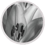 Lily - American Cheerleader 07 - Bw - Water Paper Round Beach Towel