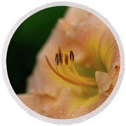 Lily Bloom Profile Round Beach Towel
