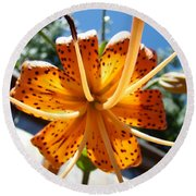Lily Flower Artwork Orange Lilies 3 Giclee Art Prints Baslee Troutman Round Beach Towel