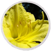 Lily Flower Artwork Yellow Lilies 1 Giclee Art Prints Baslee Troutman Round Beach Towel