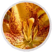 Lily Flower Macro Orange Lilies Floral Art Print Baslee Troutman Round Beach Towel