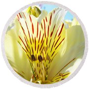 Lily Flowers Art Prints Yellow Lillies 2 Giclee Prints Baslee Troutman Round Beach Towel