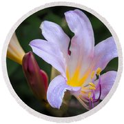 Lily In The Rain By Flower Photographer David Perry Lawrence Round Beach Towel