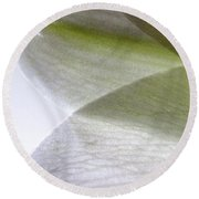 Lily Light And Shadow Round Beach Towel