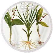 Lily-of-the-valley Round Beach Towel