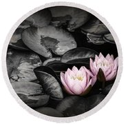 Lily Pad Blossoms Round Beach Towel