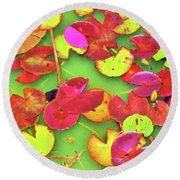 Lily Pad Faces Round Beach Towel