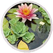 Lily Pad Lunch Round Beach Towel