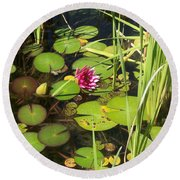 Lily Pad Pond In High Noon Sun Round Beach Towel