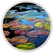 Lily Pads At Sunset Round Beach Towel
